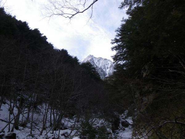 IMGP4509.jpg